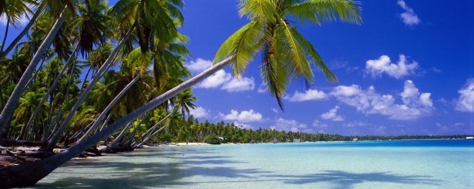 polynesien urlaub sehensw rdigkeiten easyvoyage. Black Bedroom Furniture Sets. Home Design Ideas